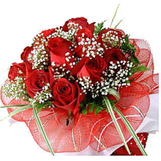 Fifteen Long Steam Red Roses Is Passion