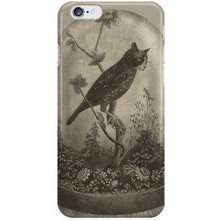 Dreambolic The Curiosity I Phone 6 Plus Mobile Cover