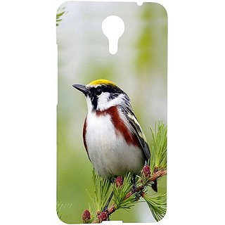 Casotec Bird Pattern Design 3D Hard Back Case Cover for Micromax Canvas Xpress 2 E313