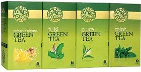 LaPlant Green Tea Combo V - 100 Tea Bags (Pack of 4 Pure, Tulsi, Mint  Lemon-Ginger)