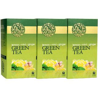 Laplant Lemon, Mint  Ginger Green Tea - 75 Tea Bags (Pack of 3)