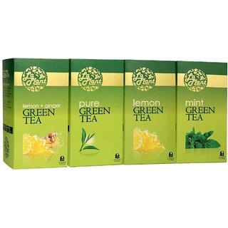 LaPlant Green Tea Combo IV - 100 Tea Bags (Pack of 4 Pure, Lemon, Mint  Lemon-Ginger)