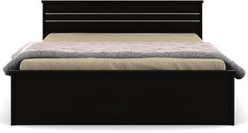 Spacewood Carnival Queen Size Bed without Storage  Natural Wenge