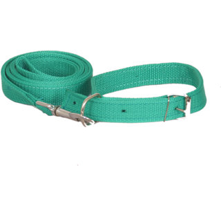 PET CLUB51 STANDARD DOG COLLAR AND LEASH- LARGE-GREEN