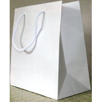 White Kraft Paper Bags Pack Of 10 Bags