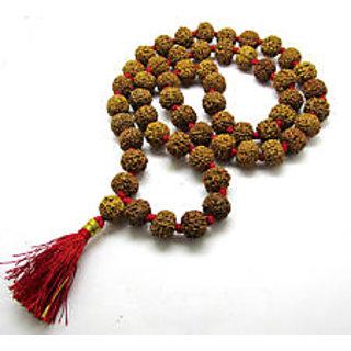 7 mukhi rudraksha mala buy online
