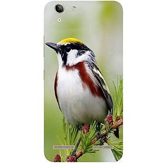 Casotec Bird Pattern Design Hard Back Case Cover for Lenovo Vibe K5 Plus
