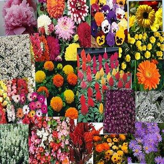 Seeds-Winter Floral Kit Pack Of 10
