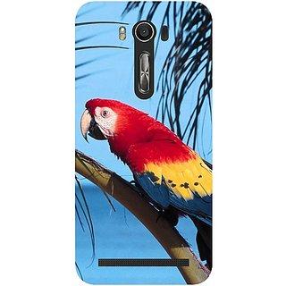 Casotec Beach Parrot Design Hard Back Case Cover for Asus Zenfone 2 laser ZE500KL