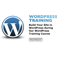 Wordpress Complete Training DVD