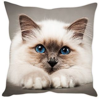 Fairshopping Cushion Cover White Cute Cat  (PMCCWF0047)