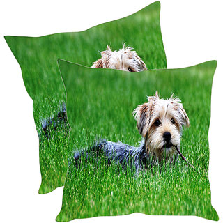 Sleep NatureS Dogs Printed Cushion Covers Pack Of 2