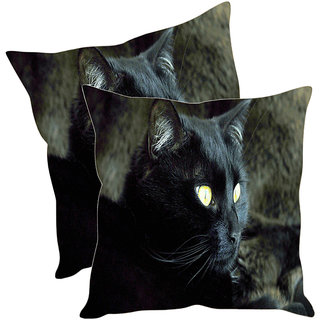 Sleep NatureS Black Cat Printed Cushion Covers Pack Of 2