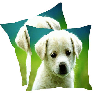 Sleep NatureS Puppy Printed Cushion Covers Pack Of 2