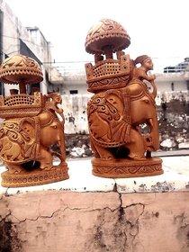 Elephant ammavari