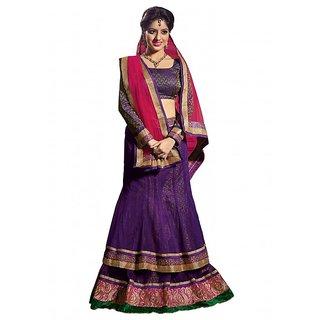 Aaina Purple Net Embrodried Bridal Lehenga (AN1021)
