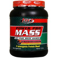 PERFECT POWER PRO MASS (1 KG) - ISO LEAN MASS GAINER