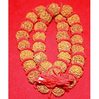 5 MUKHI KANTHA RUDRAKSHA FIVE FACE MALA COTTON THREAD -ENERGIZED 32+1 Beads