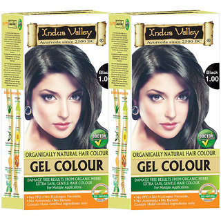 Buy Indus valley Organically Natural Permanent Gel Black 1.00 Hair ...