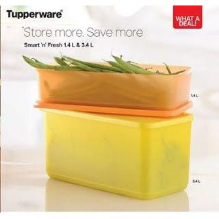 Tupperware Smart N Fresh Container (1.4 l , 3.4 l) - Set Of 2