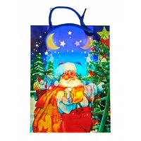 Christmas Party Return Gift Printed Bags(Pack Of 3)
