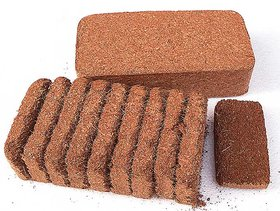 COCO Coco Peat 450 GRAMS PACK