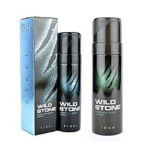 Wild Stone Steel, Iron Body Spray  (pack of 2) 120ml each