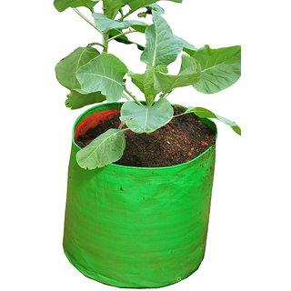HDPE Grow bag 10 nos Size 12 x 12 Inch ( 1 x 1 feet) Terrace/Kitchen Garden