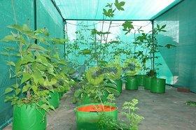 HDPE Grow bag 5 nos Size 15 x 15 Inch ( 1.25 x 1.25 feet) Terrace/Kitchen Garden