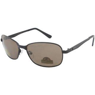 AAO+ Glass Polarized Lens Rectangular Sunglasses-dolo092