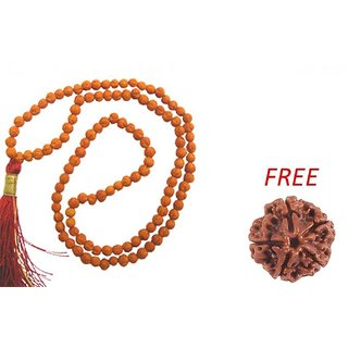 only4you 100 Original Real 5 Mukhi Rudraksha Mala For Jaap  5 Mukhi Rudraksha Bead FREE