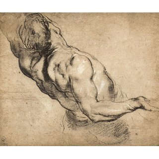 The Museum Outlet - Study of man's torso by Rubens - Poster Print Online Buy (24 X 32 Inch)