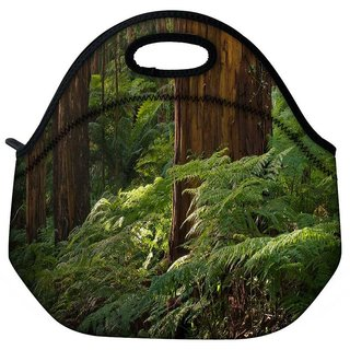 Snoogg Small Plants In Forest Travel Outdoor Tote Lunch Bag