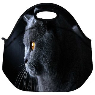 Snoogg British Shorthair Cat Animal Travel Outdoor Tote Lunch Bag