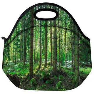Snoogg Tall Tress With No Leaves Travel Outdoor Tote Lunch Bag