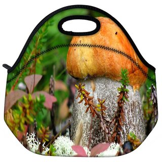 Snoogg Orange Mushroom Travel Outdoor Tote Lunch Bag