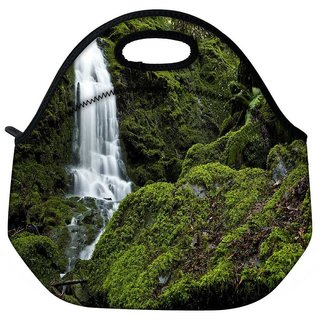Snoogg Big Waterfall Travel Outdoor Tote Lunch Bag