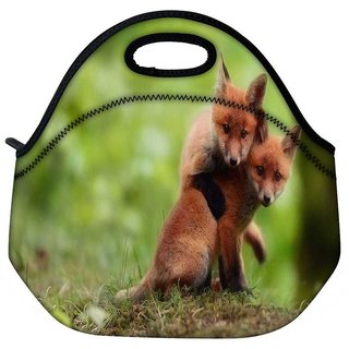 Snoogg Babies Fox Travel Outdoor Tote Lunch Bag