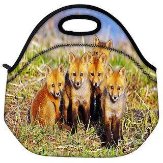 Snoogg Small Foxs Travel Outdoor Tote Lunch Bag