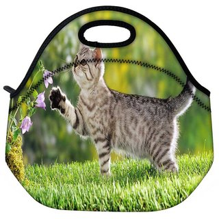 Snoogg Cat Playing Travel Outdoor Tote Lunch Bag