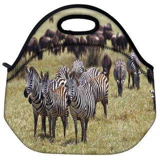Snoogg Multiple Zebra Travel Outdoor Tote Lunch Bag