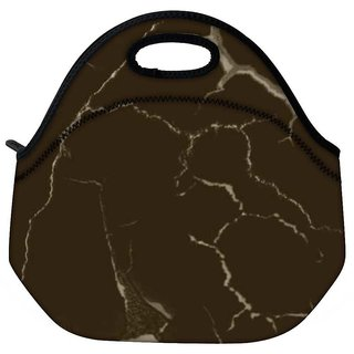Snoogg Brown Crack Travel Outdoor CTote Lunch Bag