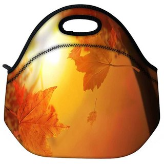Snoogg Orange Autumn Travel Outdoor Tote Lunch Bag