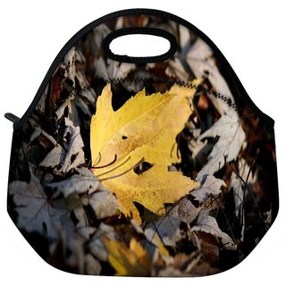 Snoogg Yellow Leaves In Dry Leaves Travel Outdoor Tote Lunch Bag