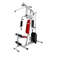 Lifeline Multi Home Gym With 150 Pound Weight Stack