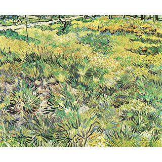 The Museum Outlet - Meadow in the Garden of Saint-Paul Hospital by Van Gogh - Poster Print Online Buy (24 X 32 Inch)