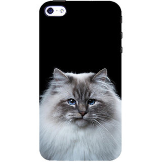 ifasho Innocent Cat with brown Eyes Back Case Cover for Apple iPhone 5