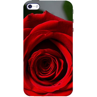ifasho Red Rose Back Case Cover for Apple iPhone 5