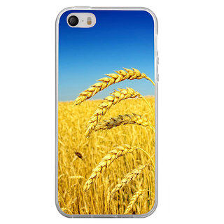 ifasho Rice grown in rice field Back Case Cover for Apple Iphone 4
