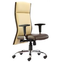 Director Chairs - Office Chairs